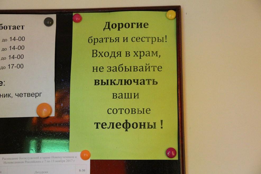 gallery_1756_1222_129109.jpg